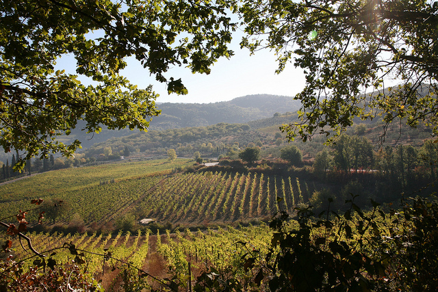 Colinas de Chianti (Foto: rethought)